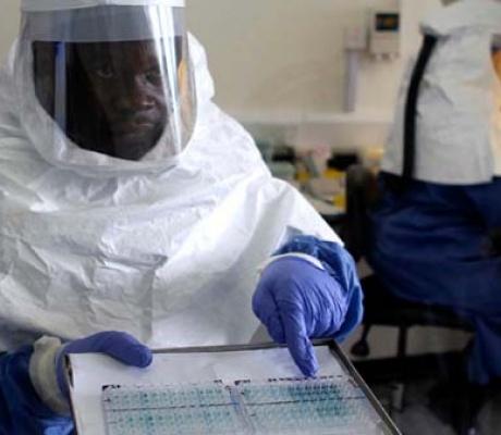 ONU anuncia novo teste para detectar Ébola em 15 minutos